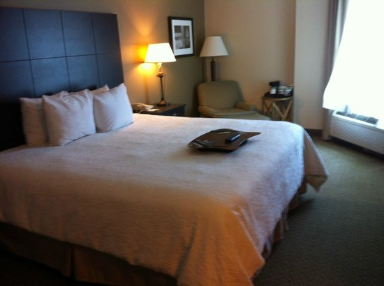Hampton Inn & Suites Reagan National Airport: So comfy!