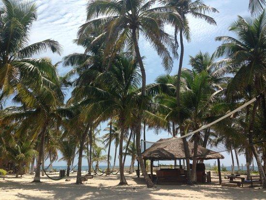 Poc-Na Hostel: Esta es el area de la playa que tiene poc na donde esta la cancha de volley el bar y las hamacas