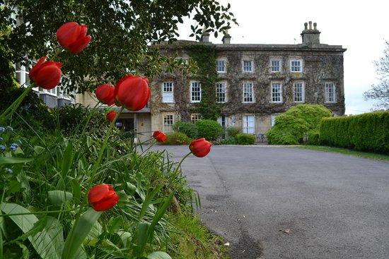 Monkton Combe, UK: In Bloom