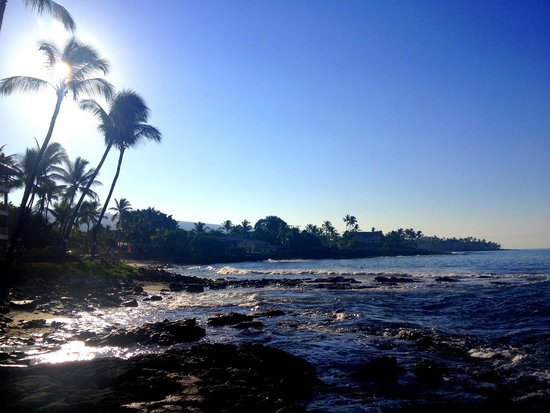 Kona Reef Resort: Resort's private beach