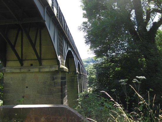 Pontcysyllte Aqueduct: Aqueduct from below