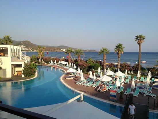 Paloma Pasha Resort : Pool and beach