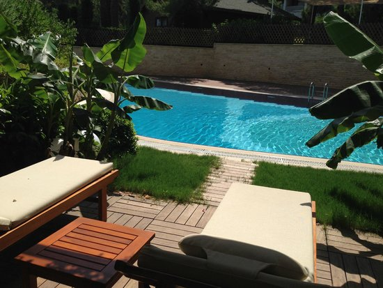 Paloma Pasha Resort : Swim up room