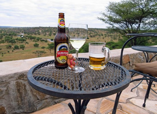 Tarangire Safari Lodge : Little Bear Unwinds, too