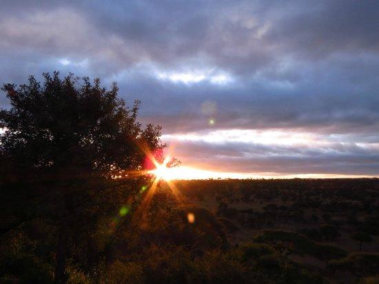 Tarangire Safari Lodge : Sunrise From Our Cabin