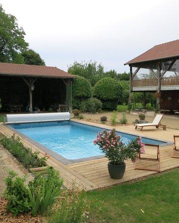 Les Jardins de Lily: La piscine