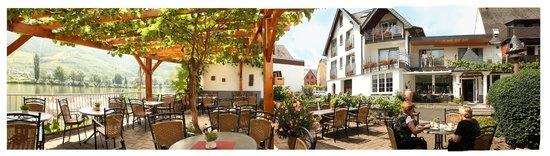Hotel Weinhaus Halfenstube: schönste Moselterrasse