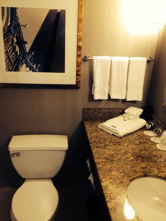 The Westin Copley Place, Boston: Clean Bathroom