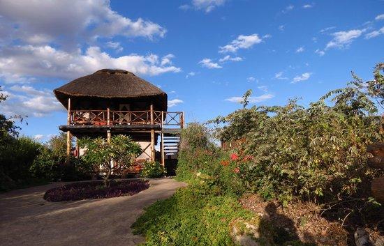 Manyara Wildlife Safari Camp: Luxe Cabin