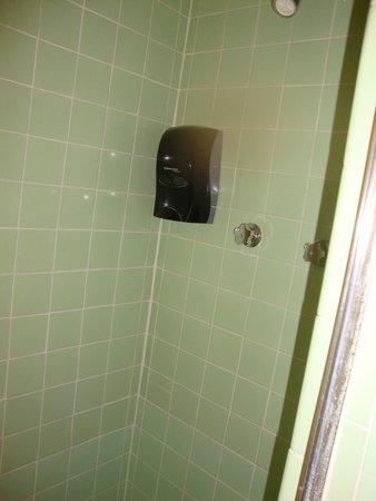Dietzel Motel: Soap in Shower area
