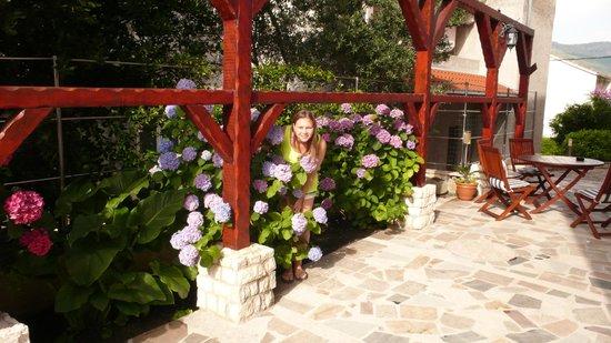 Villa Stobrec : Все цветет!
