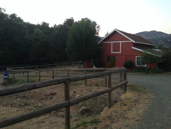 Meadowlark Country House: Stables