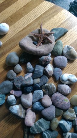 Motel Carleton-sur-Mer : Collecting souvenirs