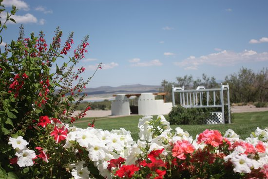 Elephant Butte Inn: East lawn