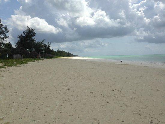 Zanzibar White Sand Luxury Villas & Spa: Beach in front of White Sand Luxury Villas