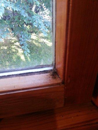 Wildside Highland Lodges: kitchen window