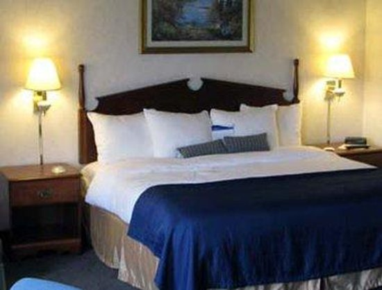 Baymont Inn & Suites Washington : Guest Room