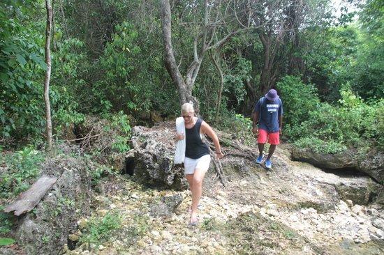 JuJu Tours: Hike