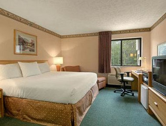 Baymont Inn & Suites Traverse City: Standard King Bed Room