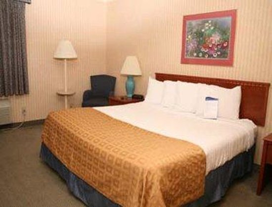 Baymont Inn & Suites Detroit/roseville: Guest Room