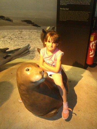 Nausicaa, Centre National de la Mer : ma louloute a adorer