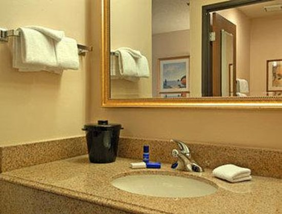 Baymont Inn & Suites Memphis East : Bathroom