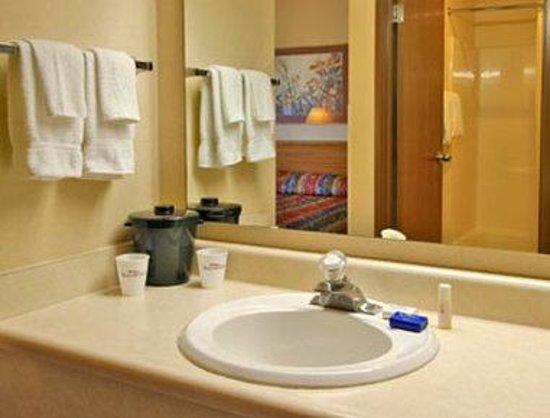 Baymont Inn and Suites Stevensville: Bathroom
