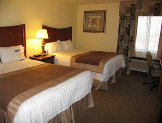 Baymont Inn & Suites Arlington at Six Flags DR: Standard Two Double Bed Room