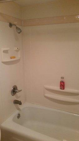 Regency Inn: The bathroom