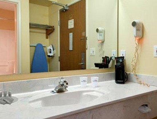 Baymont Inn & Suites Mt. Pleasant: Bathroom