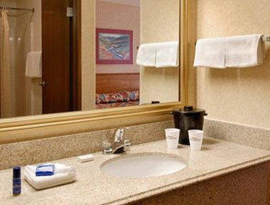 Baymont Inn & Suites Bridgeport/Frankenmuth: Bathroom