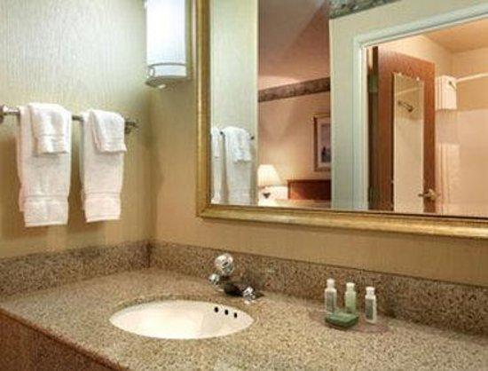 Baymont Inn & Suites Waterford/Burlington WI: Bathroom