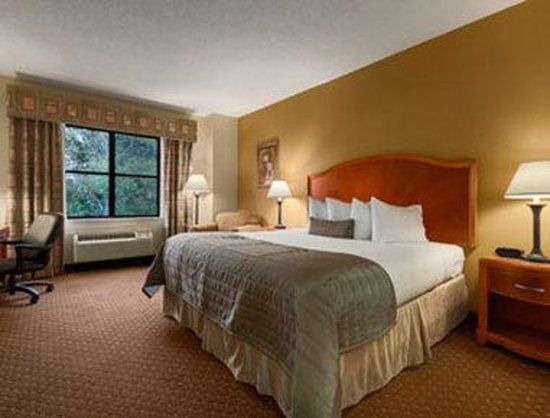 Baymont Inn & Suites Asheville/biltmore : Standard King Bed Room