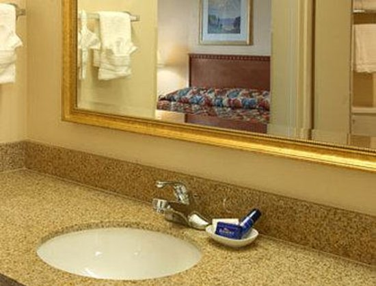 Baymont Inn & Suites Hot Springs : Bathroom