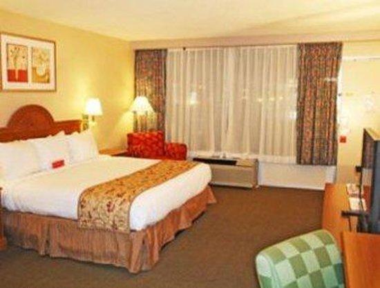 Ramada Asheville / Biltmore West: Standard King Bed Room