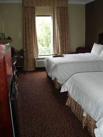 Hampton Inn Americus: Room