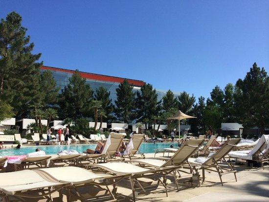ARIA Resort & Casino: Piscina