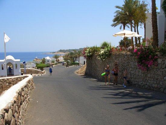 Domina Coral Bay Elisir Hotel: Виды местности 1