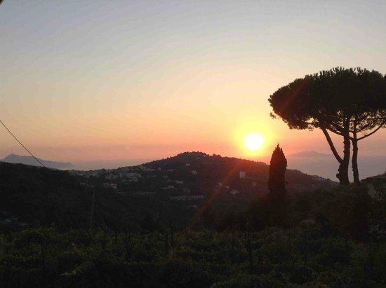 Don Pedro: Sunset