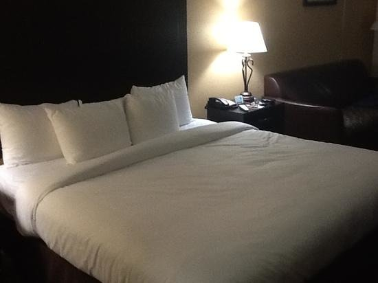 Comfort Inn: very comfy bed with choice of pillows.