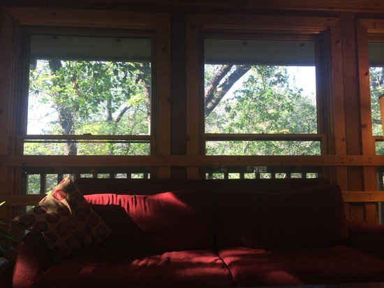 Yosemite Bug Rustic Mountain Resort : The view from breakfast!