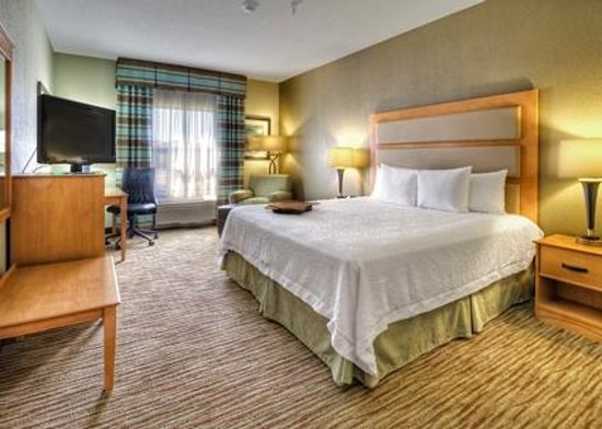 Hampton Inn & Suites Kalamazoo - Oshtemo: King guest room