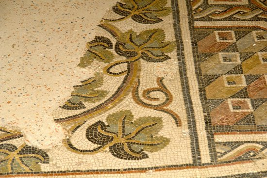 Musée de site Villa-Loupian : Celebrating the vine