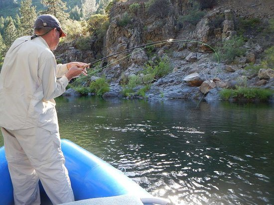 Jack Trout Fly Fishing: Fish On!