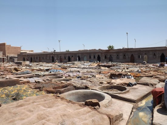 Tanneries: View of the Curing Pits