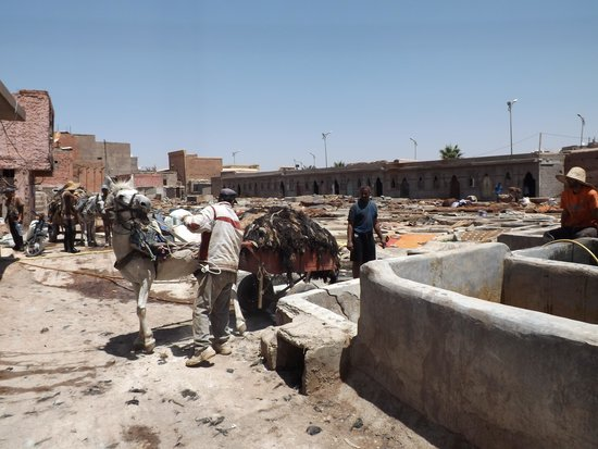 Tanneries: Unloading