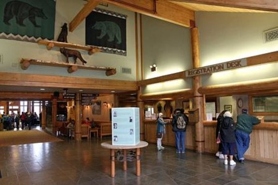 Mt. McKinley Princess Wilderness Lodge: Lobby