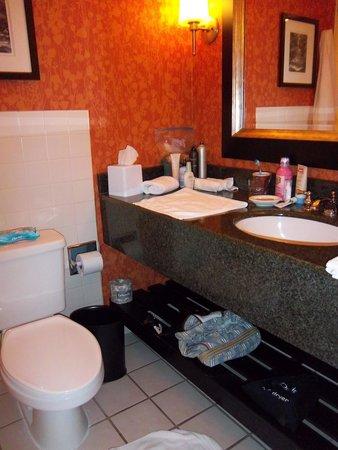 Renaissance Asheville Hotel : Bathroom view from door