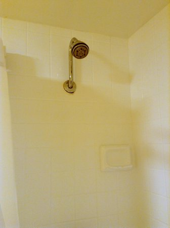 Paradise Point Resort & Spa: High-flying shower nozzle.  Hope you're tall enough to reach.