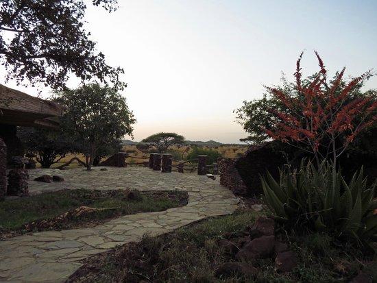 View picture of grumeti migration camp serengeti national park